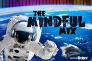 The Mindful Mix - #100