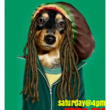 Saturday Afternoon Reggae Show