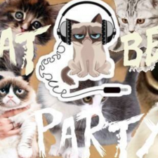 Cat Beast Party